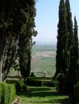 Monte Fallonico